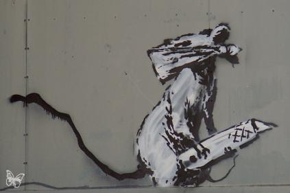 Banksy riot 03
